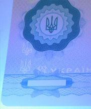 Диплом - свечение УФ (Горловка)